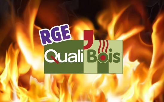 Logo qualibois